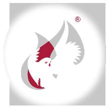 Typographen GmbH - Logo, Bildmarke